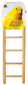 5-rung Birdie Basics Small Bird Ladder