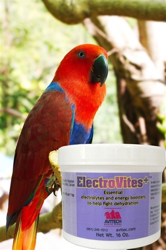 ElectroVites+ - Electrolyte Powder - 8oz
