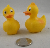 Little Yellow Rubber Duckies - 2
