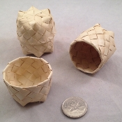 Palm Foraging Canister - Mini - 1.5 x 2