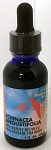Echinacea Angustifolia - Pain Control - Herbal Remedy - Morning Bird - 1oz
