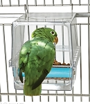 Parrot Cafe Seed Corral Feeder- Large