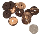 Coconut Coins - 1