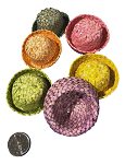 Colourful Palm Bowler Hat - 24pc - BULK