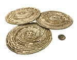 Palm Coiled Coasters -  6