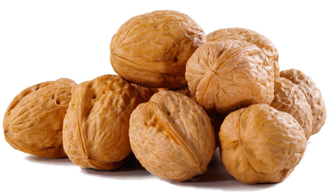 Walnuts in Shell - 1lb